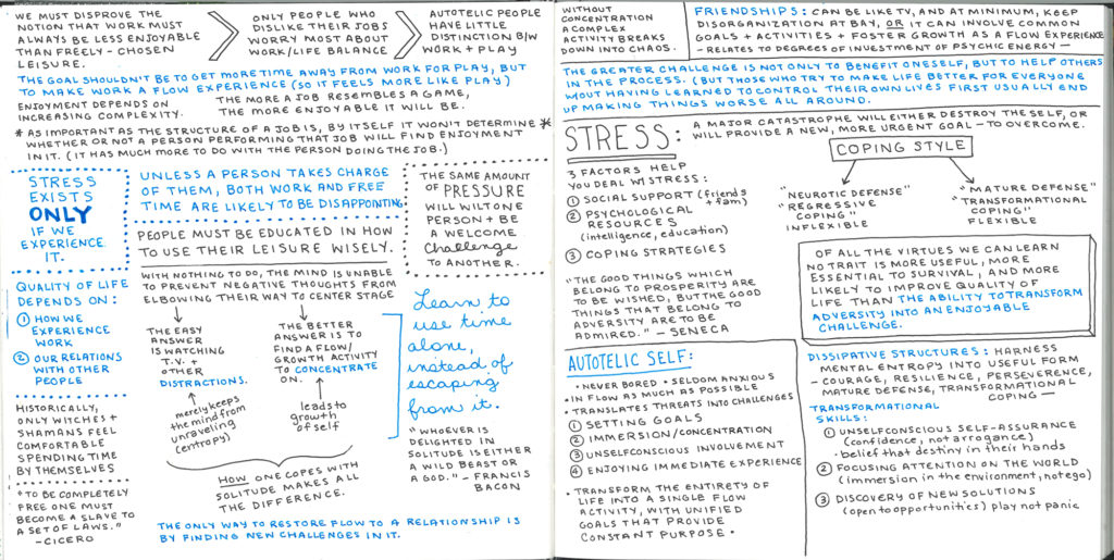 Flow the Psychology of Optimal Experience Sketchbook Notes